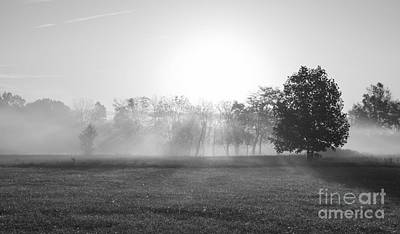Photograph - Morning Fog Grayscale by Jennifer White