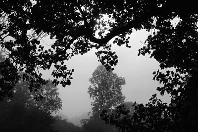 Photograph - Morning Fog by Kathryn Meyer