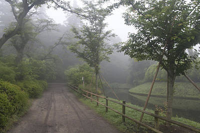 Photograph - Morning Fog by Masami Iida