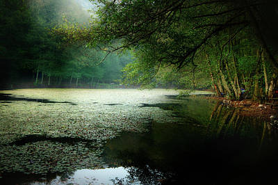 Photograph - Morning Fog by Okan YILMAZ