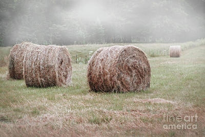Photograph - Morning Fog On The Farm by Angie Rea