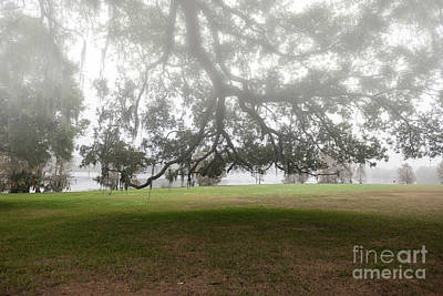 Photograph - Morning Fog Overlooking Lake Highland by Dale Powell