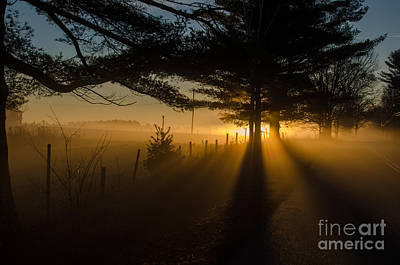 Morning Fog Art Print by Paul Noble