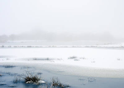 Wolf Digital Design Photograph - Morning Fog by Svetlana Sewell
