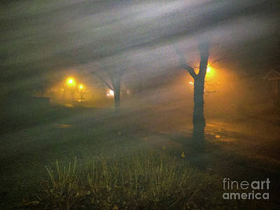 Photograph - Morning Fog by William Norton