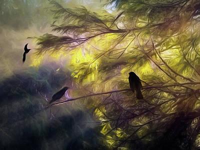 Morning Forest Light Art Print
