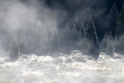 Photograph - Morning Frost by Frank Townsley