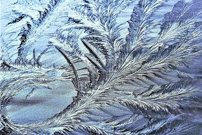 Photograph - Morning Frost - The Dragon Tail by Kim Bemis