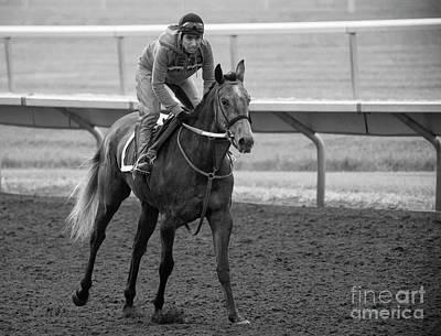 Photograph - Morning Gallop by David Bearden