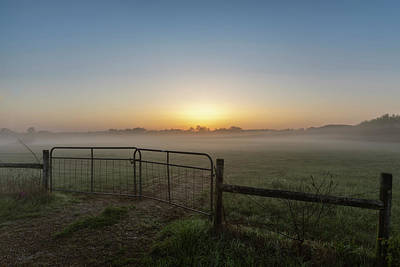 Photograph - Morning Gate by Davin McLaird