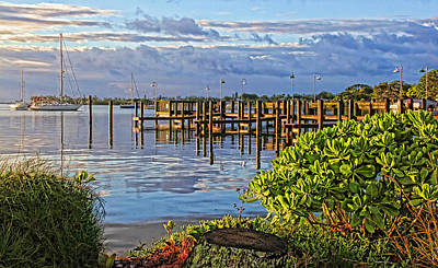 Photograph - Morning Glory 2 by HH Photography of Florida