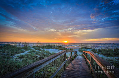 Photograph - Morning Glory 2 by Mina Isaac