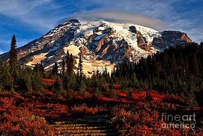 Photograph - Morning Glory At Mt. Rainier by Adam Jewell