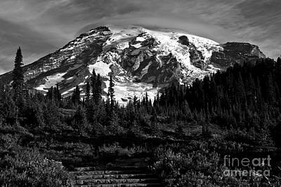 Photograph - Morning Glory At Mt. Rainier - Black And White by Adam Jewell