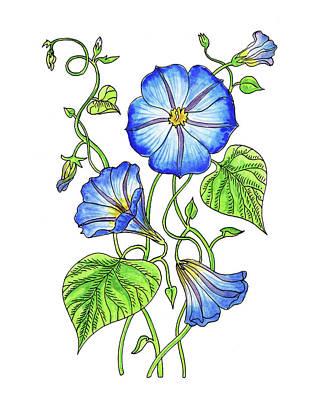 Painting - Morning Glory Botanical Watercolor  by Irina Sztukowski