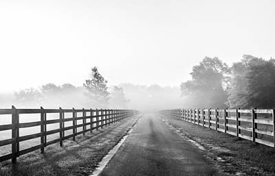 Fog Photograph - Morning Glory Monochrome by Shelby  Young