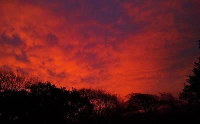 Photograph - Morning Glory by Richard Brookes