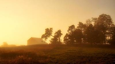 Photograph - Morning Glow by Bryan Smith