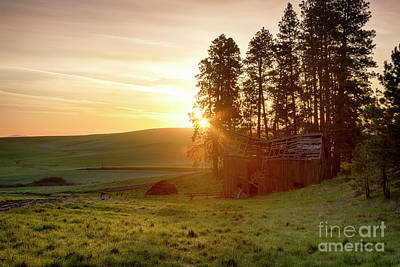 Photograph - Morning Glow by Idaho Scenic Images Linda Lantzy