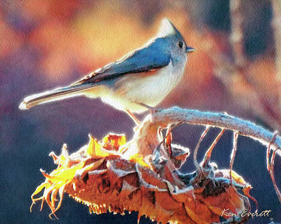 Titmouse Digital Art - Morning Glow by Ken Everett