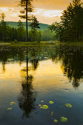 Photograph - Morning Glow On Lake by Vance Bell
