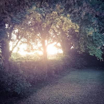 Photograph - Morning Glow by Samuel Pye