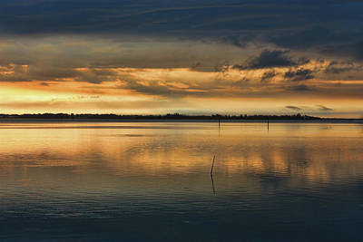 Photograph - Morning Gold by HH Photography of Florida