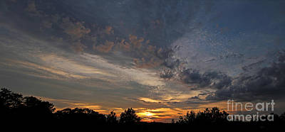 Jft Photograph - Morning Gold by James F Towne