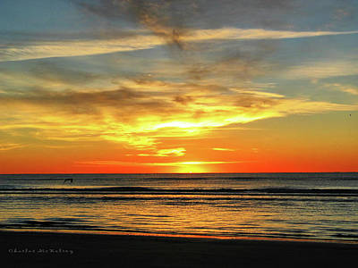 Photograph - Morning Green Flash by Charles McKelroy