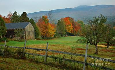 New Hampshire Autumn Photograph - Morning Grove - New England Fall Monadnock Farm by Jon Holiday
