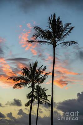 Photograph - Morning Has Broken by Jon Burch Photography