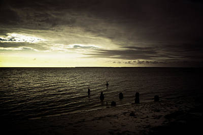 Photograph - Morning Has Broken by Judy Hall-Folde