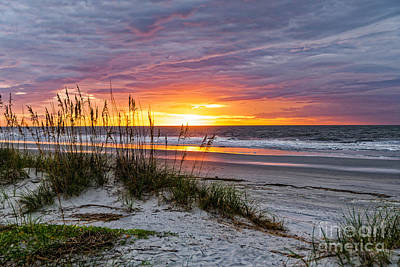 Photograph - Morning Has Broken by Paul Mashburn