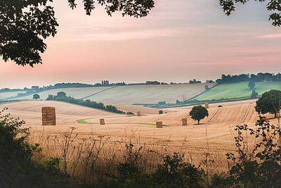 Bale Photograph - Morning Hay by Chris Dale