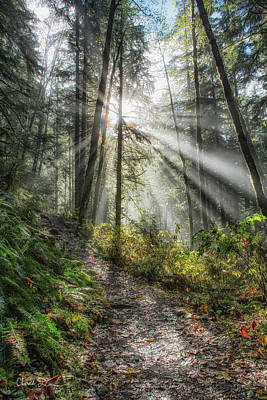 Photograph - Morning Hike by Charlie Duncan