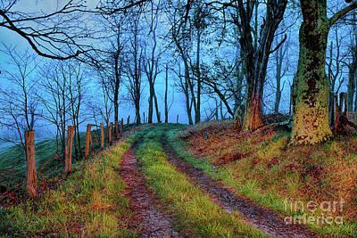 Photograph - Morning Hike In The Blue Ridge Mountains by Dan Carmichael