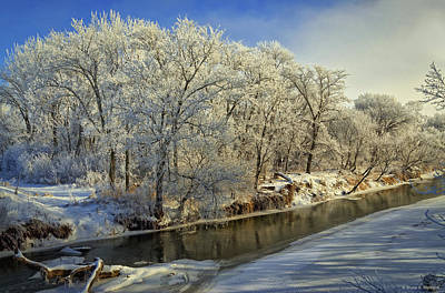 Photograph - Morning Icing Along The Creek by Bruce Morrison