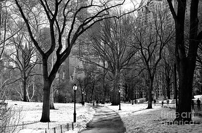 Photograph - Morning In Central Park by John Rizzuto