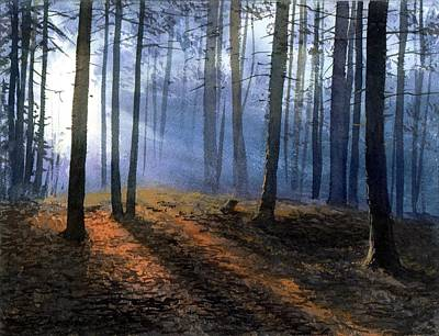 Morning In Pine Forest Art Print