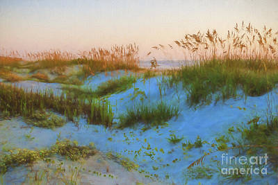 Florida House Mixed Media - Morning In The Dunes by C W Hooper