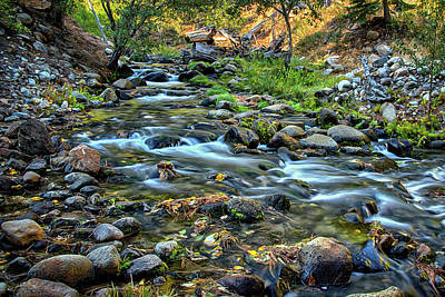 Photograph - Morning In The Sierras by Maria Coulson