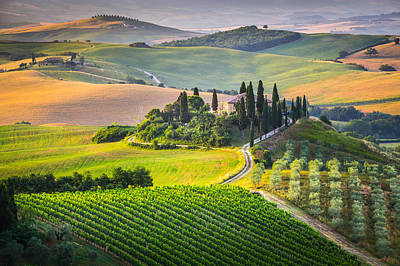 Photograph - Morning In Tuscany by Stefano Termanini
