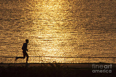 Photograph - Morning Jog by Inge Riis McDonald