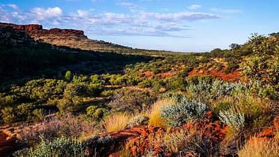 Photograph - Morning Landscape To The Rim - Kings Canyon - Northern Territory, Australia by Lexa Harpell