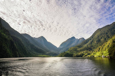 Photograph - Morning Light Hitting The Docks At Doubtful Sound In New Zealand by Daniela Constantinescu