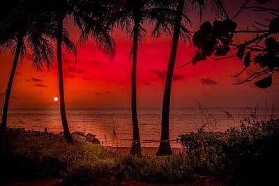 Photograph - Morning Light by Louis Ferreira