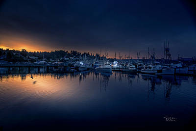 Photograph - Morning Light On The Bay by Bill Posner