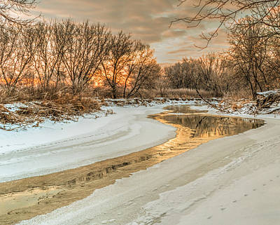 Winter Photograph - Morning Light On The Riverbank by Garvin Hunter