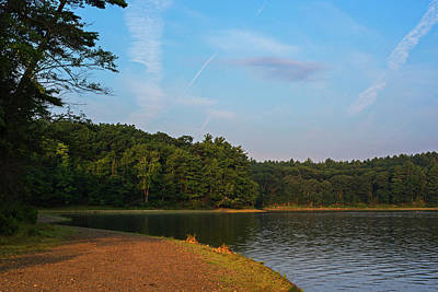 Morning Light On Walden Pond Concord Ma Art Print