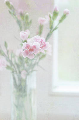 Photograph - Morning Light. The Bouquet Of Carnations by Jenny Rainbow
